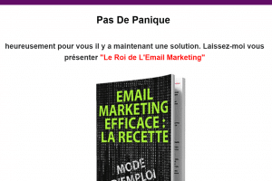Le roi de L'Email Marketing