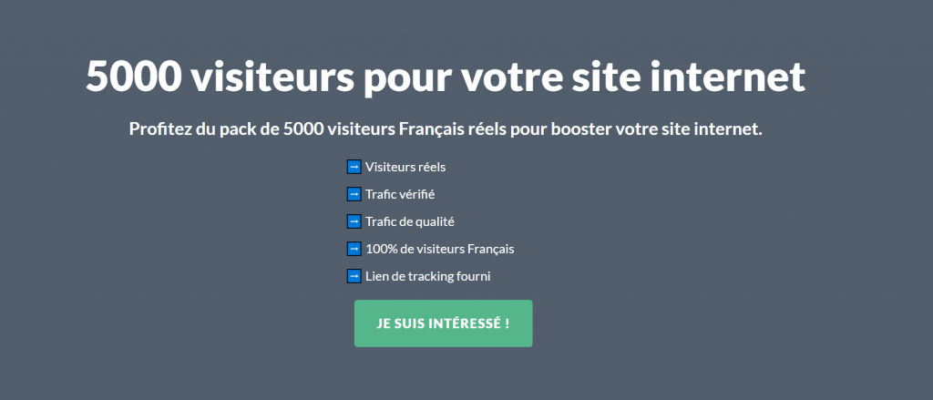 5000 visites pour votre site internet (France)