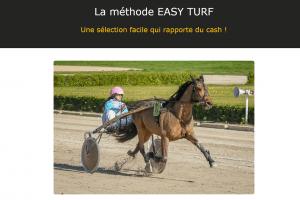 Easy Turf