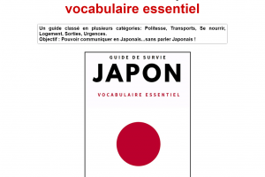 Guide de survie Japon : vocabulaire essentiel