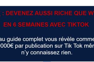 TikTok Millionnaire