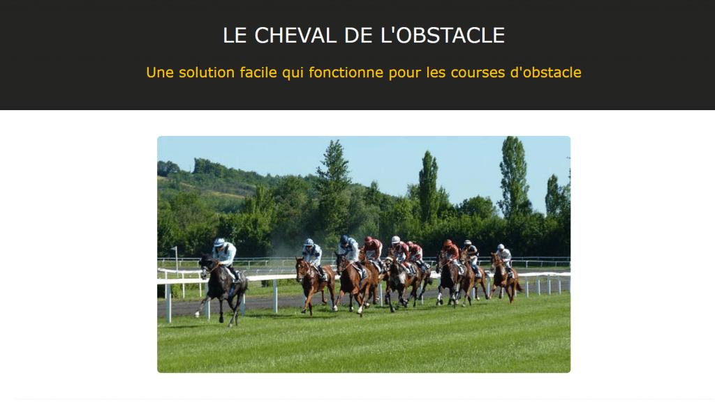 Le cheval de l'obstacle