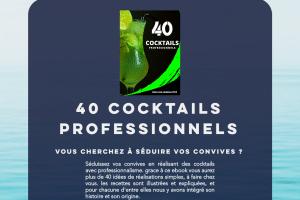 40 cocktails pour vos soirées