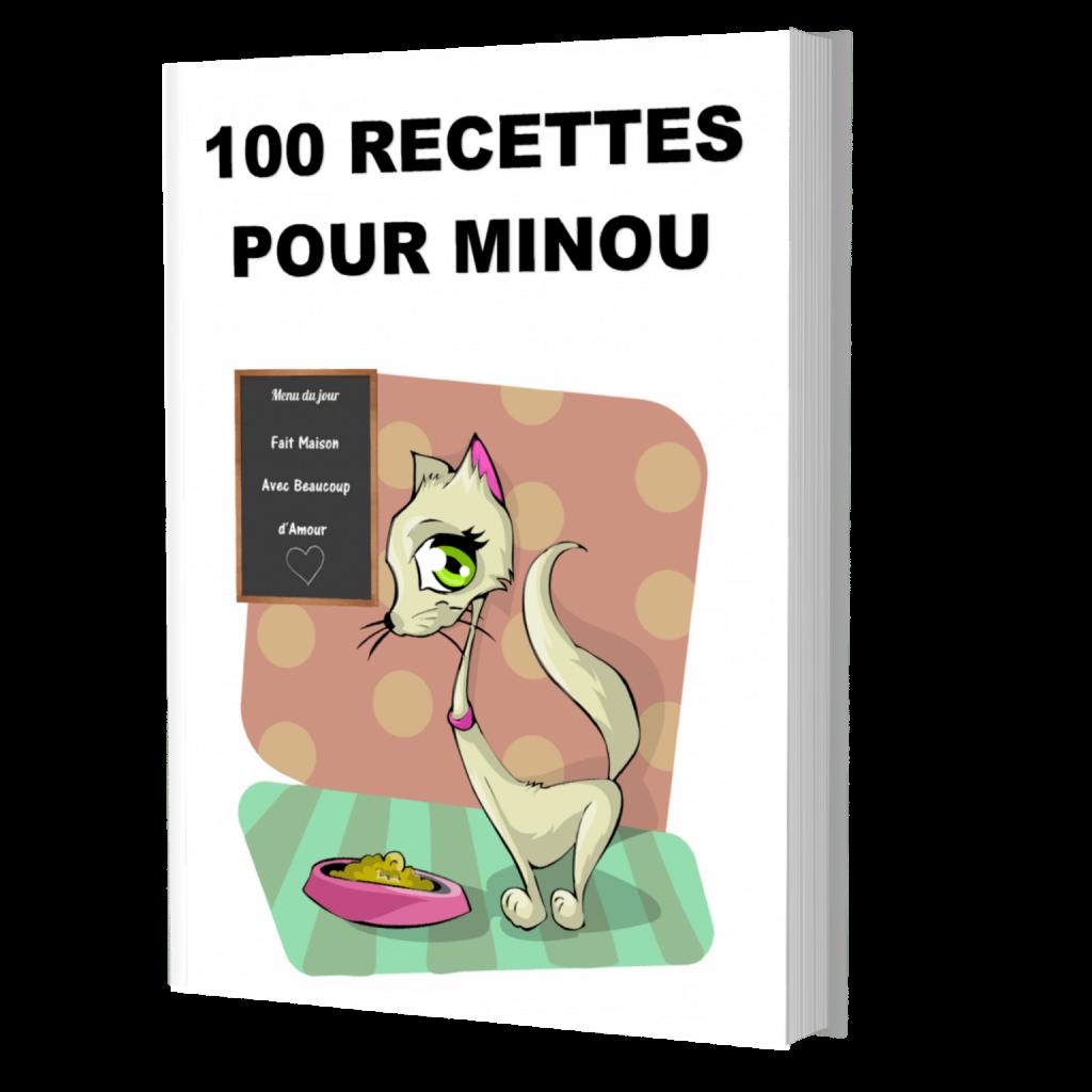100 RECETTES POUR MINOU