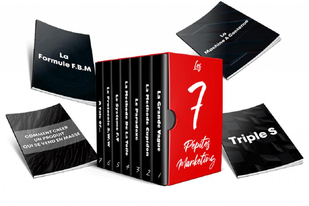 7 Pépites Marketing