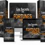 Les Secrets Des Fortunes De Crise