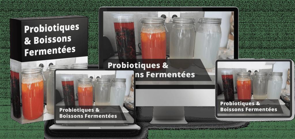 Probiotiques et Boissons Fermentées